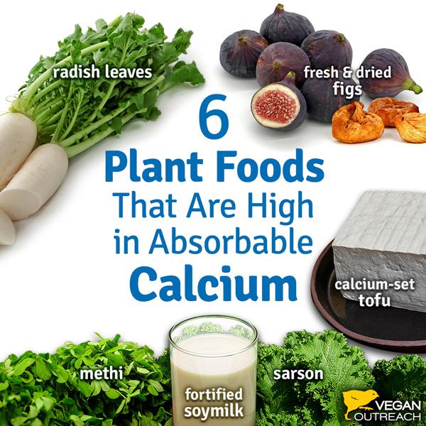 vitamins and minerals in a vegan diet