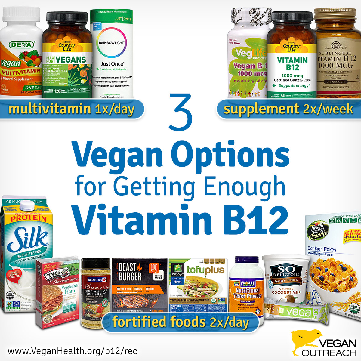 sources of vitamin b12 in vegan diet