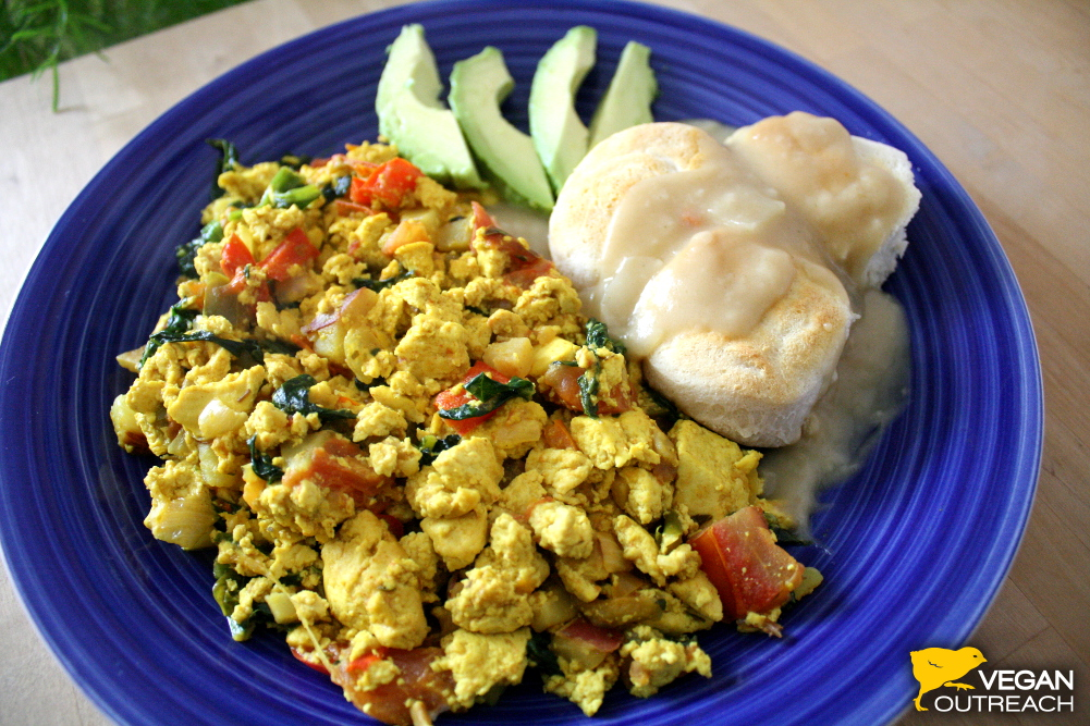 Recipes for Biscuits and Gravy and Tofu Scramble from Vegan Outreach!