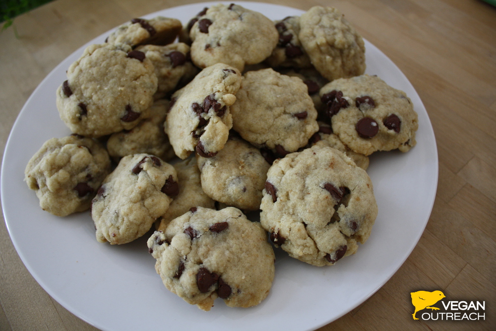 Recipe for simple Vegan Chocolate Chip Cookies on the Vegan Outreach blog!