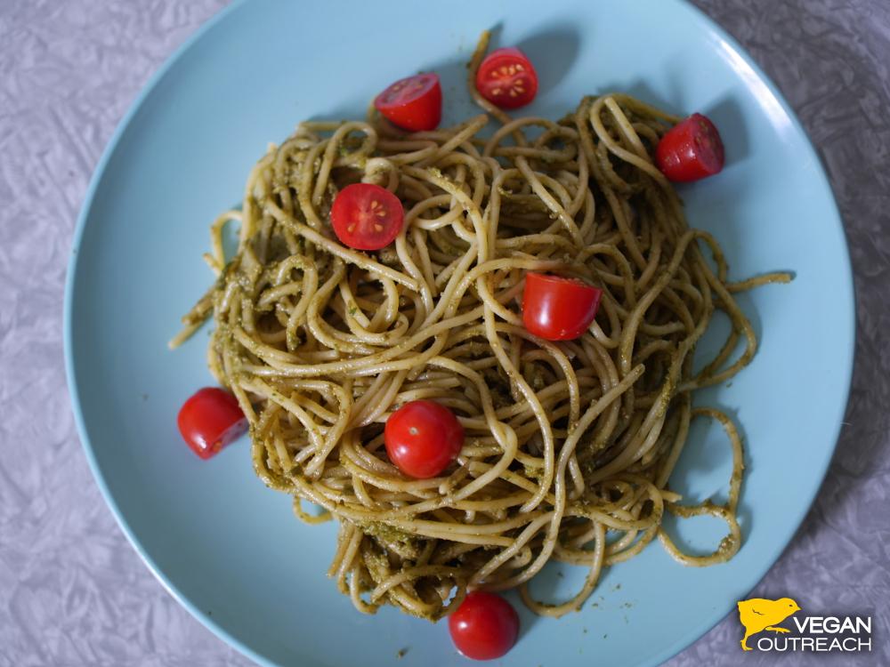 Avocado Sunflower Seed Pasta! Recipe on the Vegan Outreach blog.