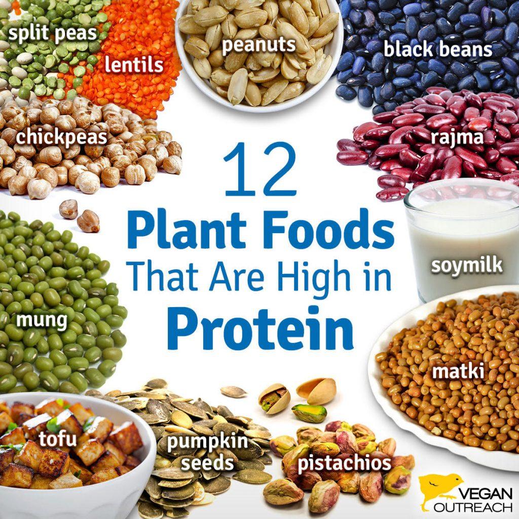 the best low fat vegan diet