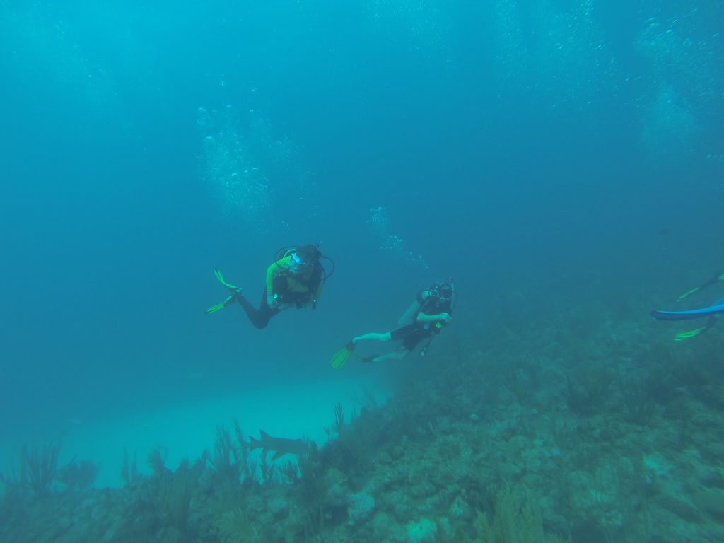 Taylor Radig and Ezra Michaels Scuba Diving