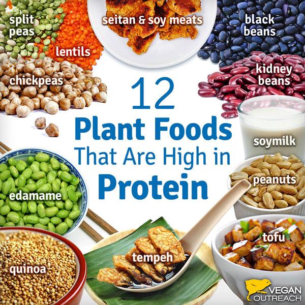 Vegan Diets—Health Benefits