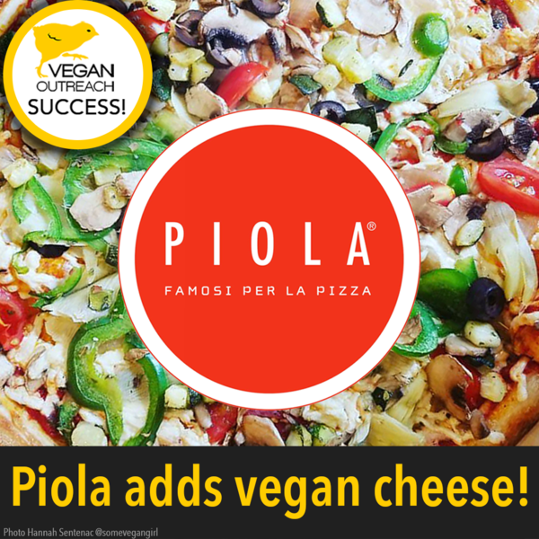 Piola adds vegan cheese